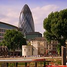 """The Gherkin"", London by Chris Millar"