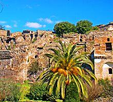 Pompeii Ruins 79AD by Al Bourassa