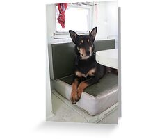 Max the Caravan Dog Greeting Card