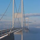 Severn Bridge lost in Mist by Brian Roscorla