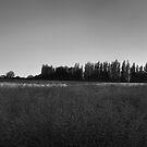 Kent Sunset by Rhys Herbert