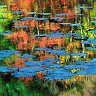 Reflections of fall by Inge Johnsson