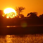 Dusk in the delta by jozi1
