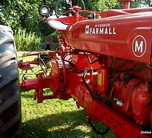 Long Beautiful FARMALL by Debbie Robbins
