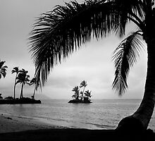 Kahala In Rain by Alex Preiss