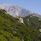 The Holy Mountain (Mt Athos) by SeanD2010