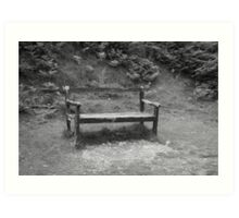 Tired old bench Art Print