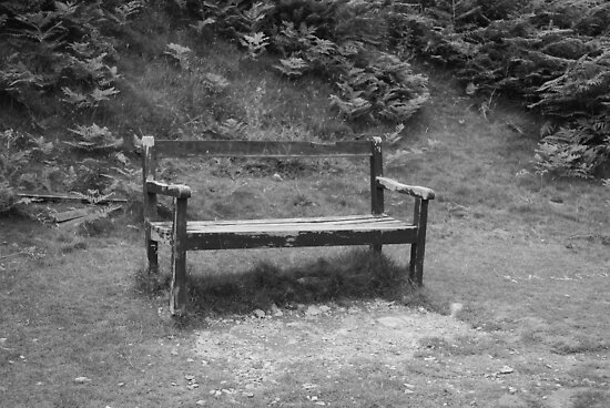 Tired old bench by dan williams
