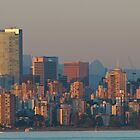 Vancouver Skyline by Stephen Hawkins