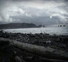 Stormfront on First Beach, La Push, WA by Jennifer Bishop