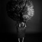 A few feathers in my cap by Philip Werner