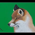 British Wildlife Set 1 - Fox by Elizabeth Hibberd