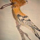 The Hoopoe by GEORGE SANDERSON