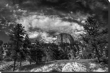 Black & White Devil's Tower by Nate Welk