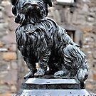Greyfriars Bobby,Edinburgh,Scotland by Jim Wilson