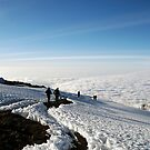 Uhuru Summit, highest peak of Kilimanjaro by mojgan