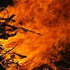Raging Fire by RocklawnArts