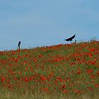 Feathered Gardeners by GlennB