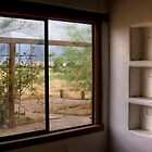The Picture Window by Sue  Cullumber