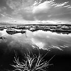 Mono Lake Sunset in BW by Chris Whitney