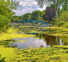 Lakeside Park Lagoon-2 by ECH52