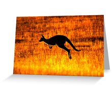 Kangaroo Sunset Greeting Card