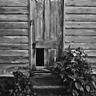 An Old Door by Kevin Miller
