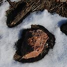 Thermal sculpture by GeoGecko