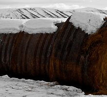 Hay bales in a winter wonderland by Kiwikels