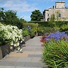 Queen Mother's Garden, RBG, Edinburgh, Scotland. by Dorothy Thomson