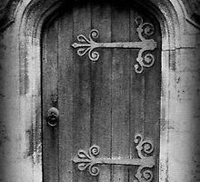Enter ©  by Dawn M. Becker