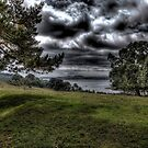 The River Fal from Trelissick by mikepom