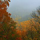 THE CHIMNEY TOPS,AUTUMN MIST by Chuck Wickham