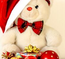 Mr Teddy has a Christmas present by pogomcl