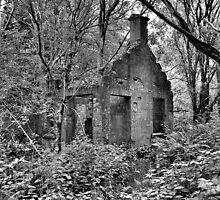 The Old House in the Woods by Lindamell