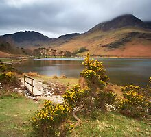 Buttermere by Jeanie