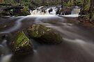Murrindindi River by Travis Easton