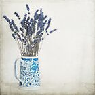 Lavender in Blue and White Jug by eyeshoot
