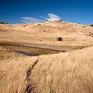 Pasture land by Alexander Meysztowicz-Howen