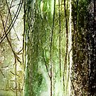 Vintage Moss 1# by Angela  Burman