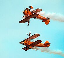 Wing Walkers by sandmartin
