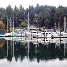 Sailboat Harbor near Tacoma by John Carpenter