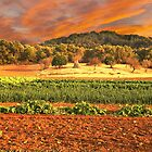 Spanish Landscape by pahit