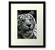 I think it is almost suppertime.. Wait a minute..I heard the door open...FOOD!!!!!  Framed Print