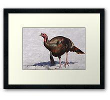 Wild Turkey in the Snow Framed Print