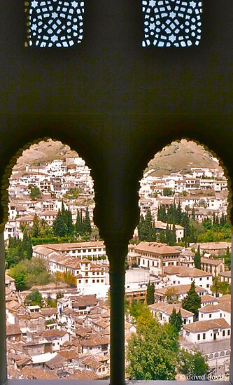 Granada from the Alhambra by David Davies