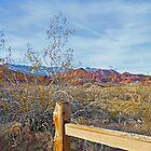 Desert Scene © by jansnow