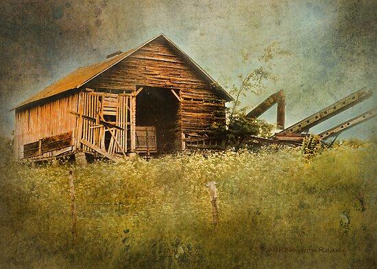 Another Indiana Farm by Kay Kempton Raade