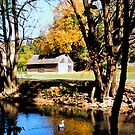 Monocacy creek - Bethlehem by djphoto