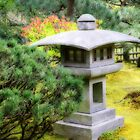 Japanese Gardens, Portland, Oregon by Chappy